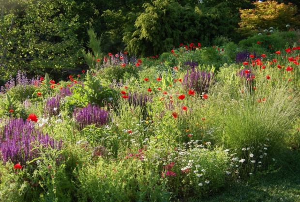 Chanticleer Garden | image credit: JR P (CC)
