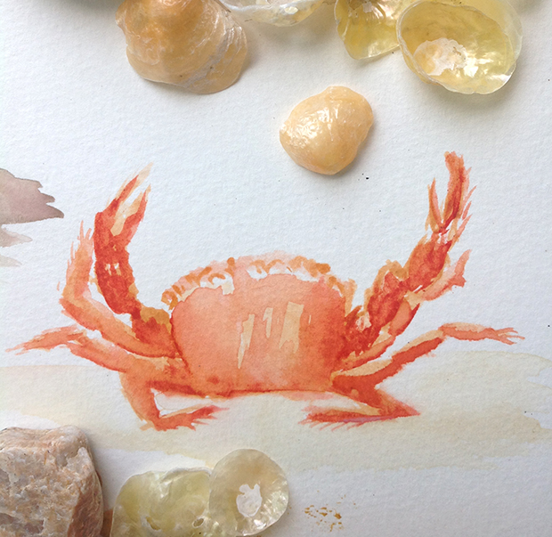 watercolor - crab