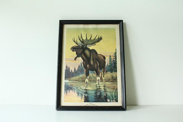 RBD Etsy Shop Vintage Moose Book Print by W. J. Wilwerding