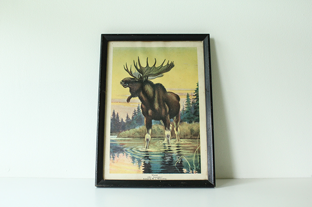 RBD Etsy Shop Vintage Moose Book Print by W. J. Wilwerding